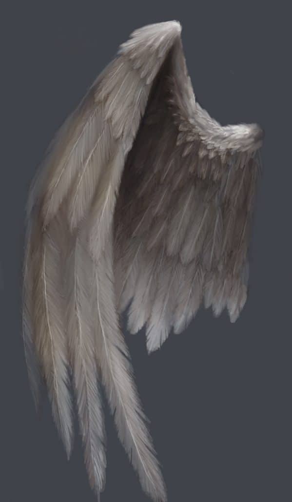 How to paint angel wings by Adam Miconi