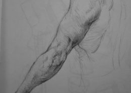 Arm and triceps charcoal drawing study by Adam Miconi